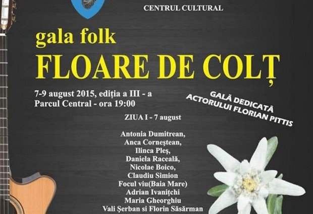 Un weekend la chitară: Gală folk la Sighet.