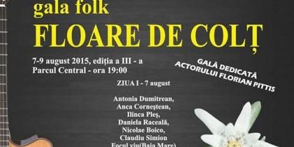 Un weekend la chitară: Gală folk la Sighet.